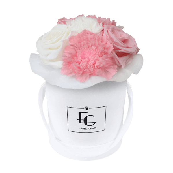 SPLENDID CARNATION MIX INFINITY ROSEBOX | BRIDAL PINK & PURE WHITE | XS