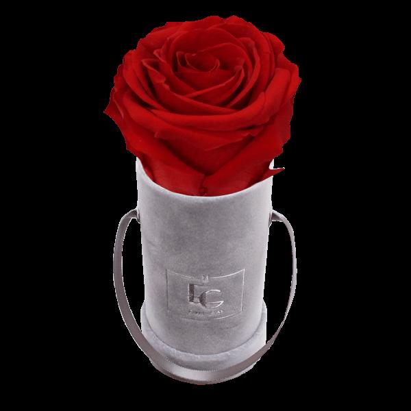 CLASSIC INFINITY ROSEBOX   VIBRANT RED   XXS