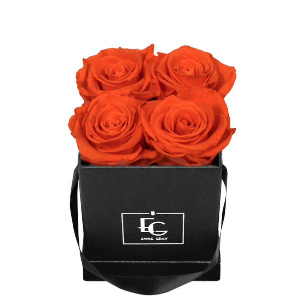 CLASSIC INFINITY ROSEBOX | ORANGE FLAME | XS
