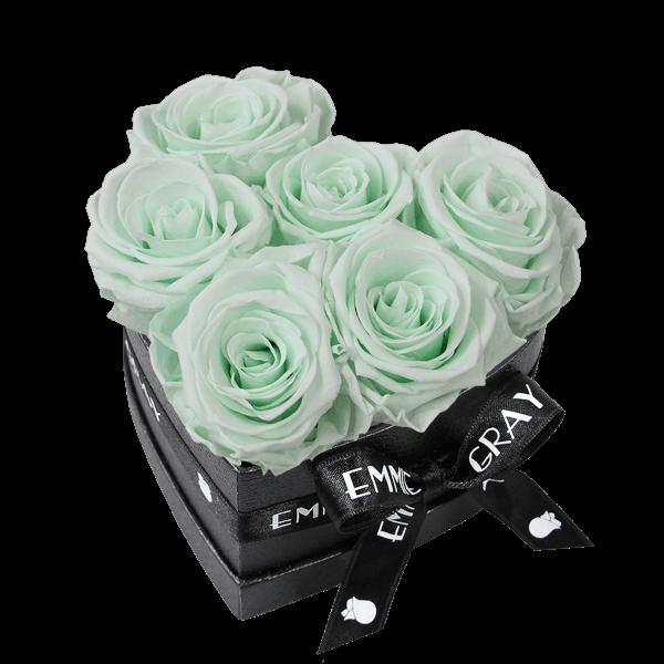 Classic Infinity Rosebox   Minty Green   S