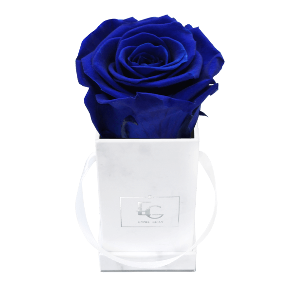 Classic Infinity Rosebox | Ocean Blue | XXS