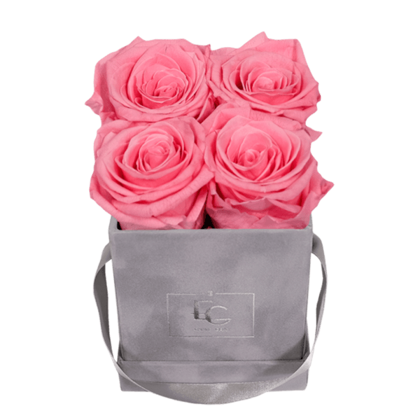 CLASSIC INFINITY ROSEBOX | BABY PINK | XS