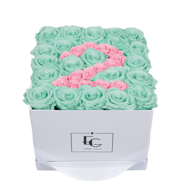 NUMBER INFINITY ROSEBOX | MINTY GREEN & BRIDAL PINK | M