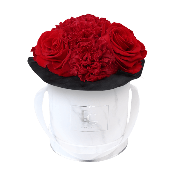 SPLENDID CARNATION INFINITY ROSEBOX | VIBRANT RED | XS