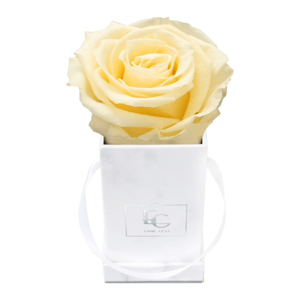 Classic Infinity Rosebox | Champagne | XXS