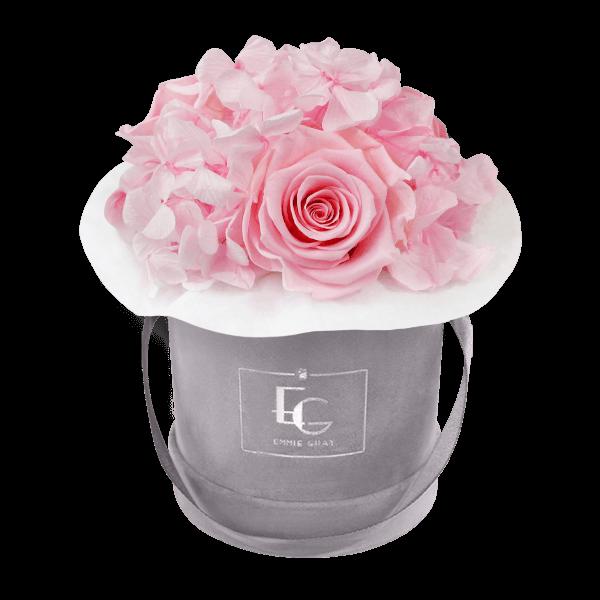 Splendid Hydrangea Infinity Rosebox   Bridal Pink   XS