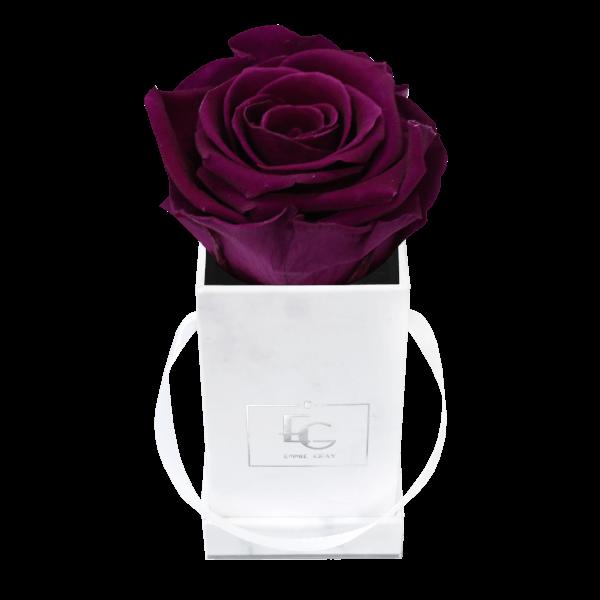 Classic Infinity Rosebox | Velvet Plum | XXS