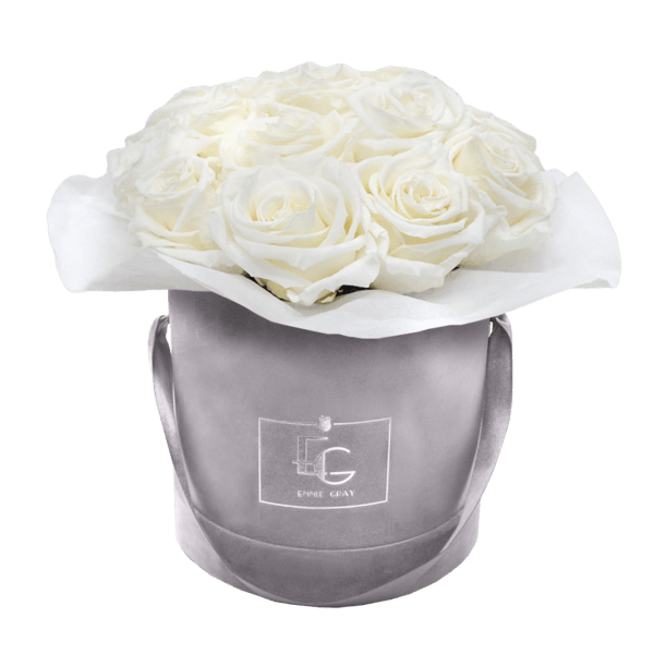 SPLENDID INFINITY ROSEBOX | PURE WHITE | S