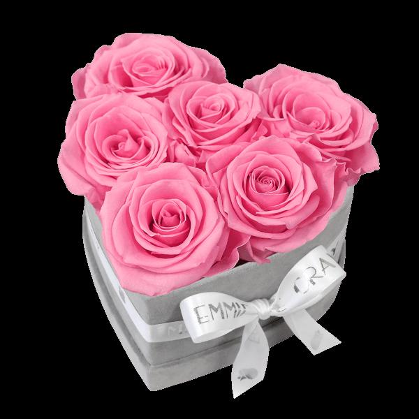 Classic Infinity Rosebox   Baby Pink   S