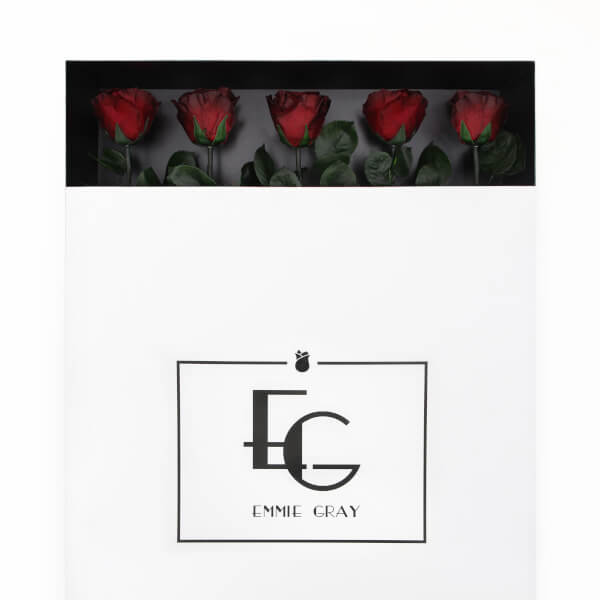 Long Stem Infinity Rose | Burgundy | 5 Roses