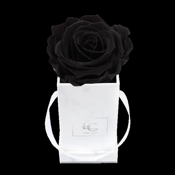 Classic Infinity Rosebox | Black Beauty | XXS