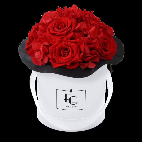 Splendid Hydrangea Infinity Rosebox   Vibrant Red   S