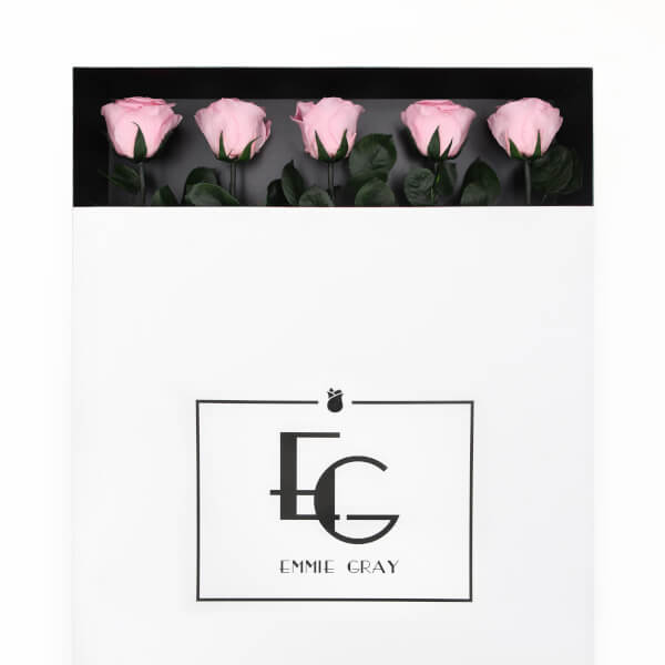 Long Stem Infinity Rose | Bridal Pink | 5 Roses