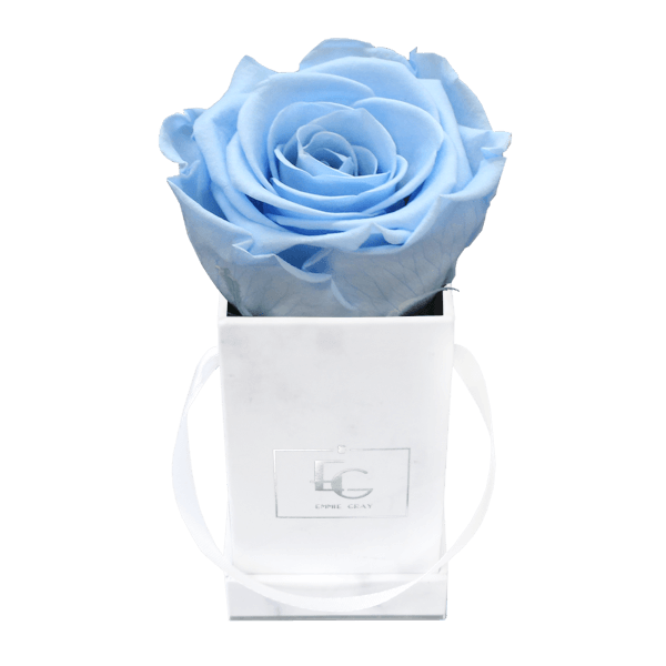 Classic Infinity Rosebox | Baby Blue | XXS