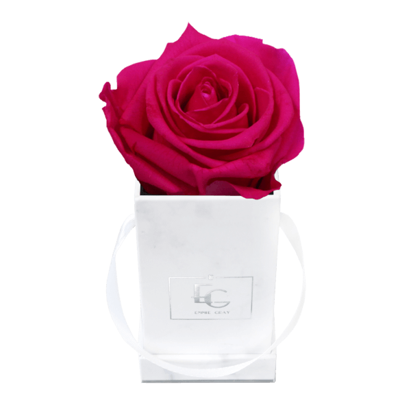 Classic Infinity Rosebox | Hot Pink | XXS
